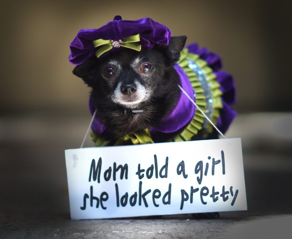 """""""My mom was in a store. She saw a lady dressed real nice. The lady's outfit took great care, and she looked so pretty. My mom told her so. It was nice. The lady smiled real big and said thank you."""" ~ Woofie Sweetthing, writer"""