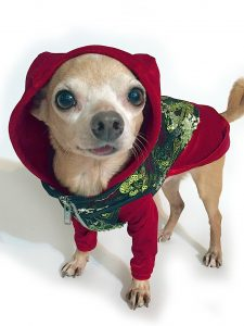 red-dog-hoodie-with-vest